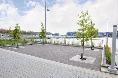 The tree guards really stand out from the promenade's terraces thanks to their design, giving them a high aesthetic quality besides offering all-round protection. Tree roots are kept protected and rainwater is drained.