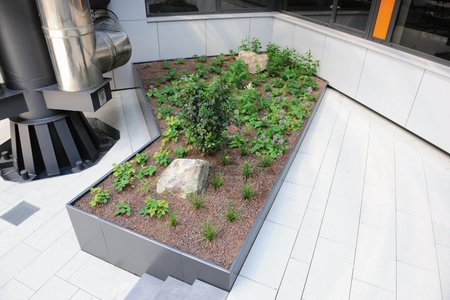 Geometric shapes such as squares and triangles define the structure of the raised beds. They help structure the courtyard area and come into their own as architectural design elements.