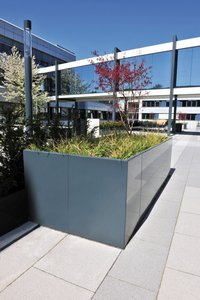The idea was to create an appealing design for the entrance area to the extension through the use of greenery. As an underground car park is located beneath the space, an upward planting system was the only option.